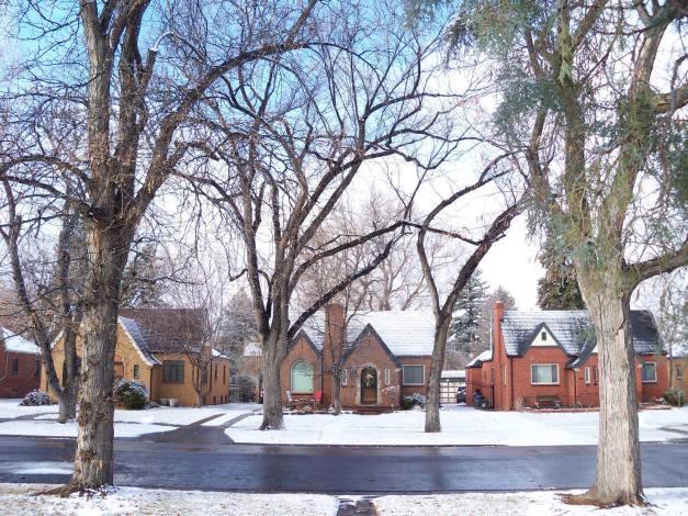 Snowfall on Oneida Street. Photo taken on January 1, 2014.